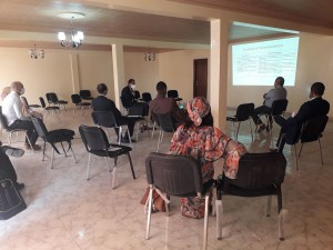 Reunion du comité technique FBR du Deuxieme Trimestre 2020
